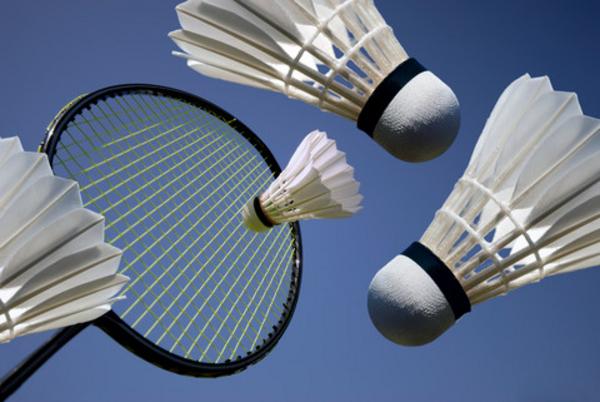 Badmintoncirkus i idræt - undervisning